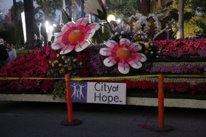 This is City of Hope's 2014 float in the Rose Parade. Can't wait to see the 2015 version on January 1, 2015.
